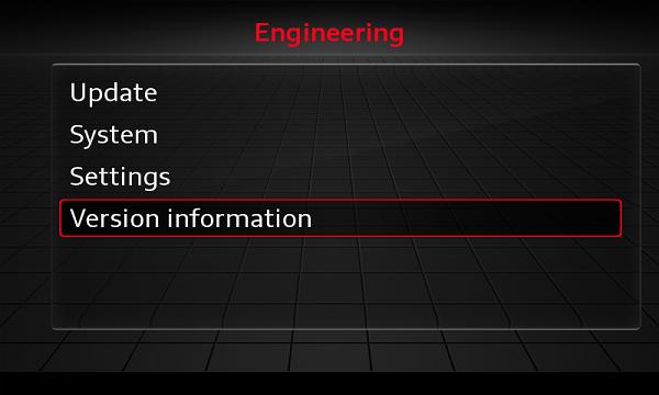 Audi Delphi MSH2 Scale Map + Activation 2021 - red menu